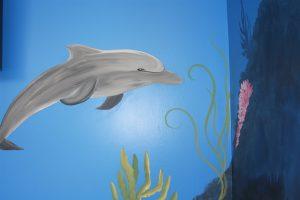 A Bright Future Pediatrics, Plano, Texas, Dolphin Mural