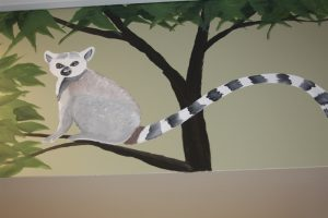 A Bright Future Pediatrics, Plano, Texas, Lemur Mural