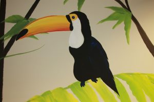 A Bright Future Pediatrics, Plano, Texas, Toucan Bird Mural